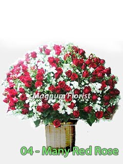 Jual Mawar Merah Besar