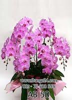 Bunga Ucapan Paling Mahal