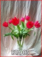 Toko Bunga Tulip Merah