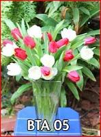 Jual Tulip Merah Putih dii Jakarta
